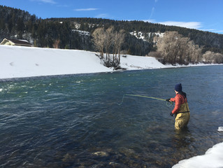 Winter Fly Fishing for the Novice