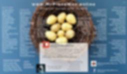 postr eggs.jpg
