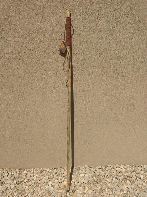 Yucca Walking Stick #1