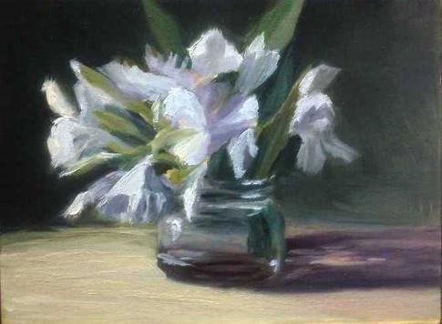 White Oleanders