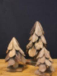 TEAKWOOD TREE.jpg