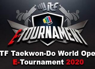 Erfolge bei World Open E-Tournament