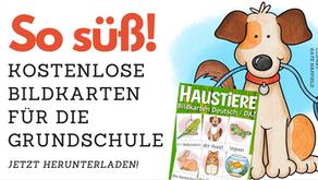 Bildkarten zum Thema Haustiere - KOSTENLOS!