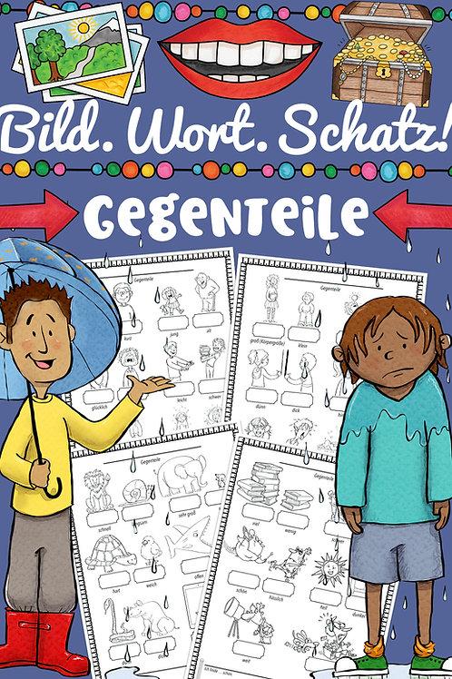 Bildwörterbuch für die Grundschule zum Thema Gegenteile - Englisch und andere Fremdsprachen