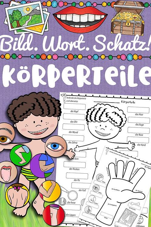 Bildwörterbuch für die Grundschule Englisch - Körper / body parts