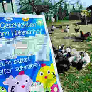 Geschichten vom Hühnerhof mit kostenlosen Cliparts Hühner Grundschule