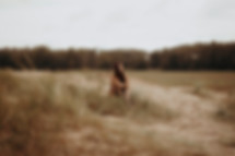 Hilda_08 Kopie.jpg