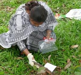 유전자 시료 채취 실습(방글라데시)