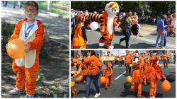 러시아호랑이축제