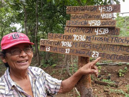 Maakauppakiemuroita Nicaraguassa