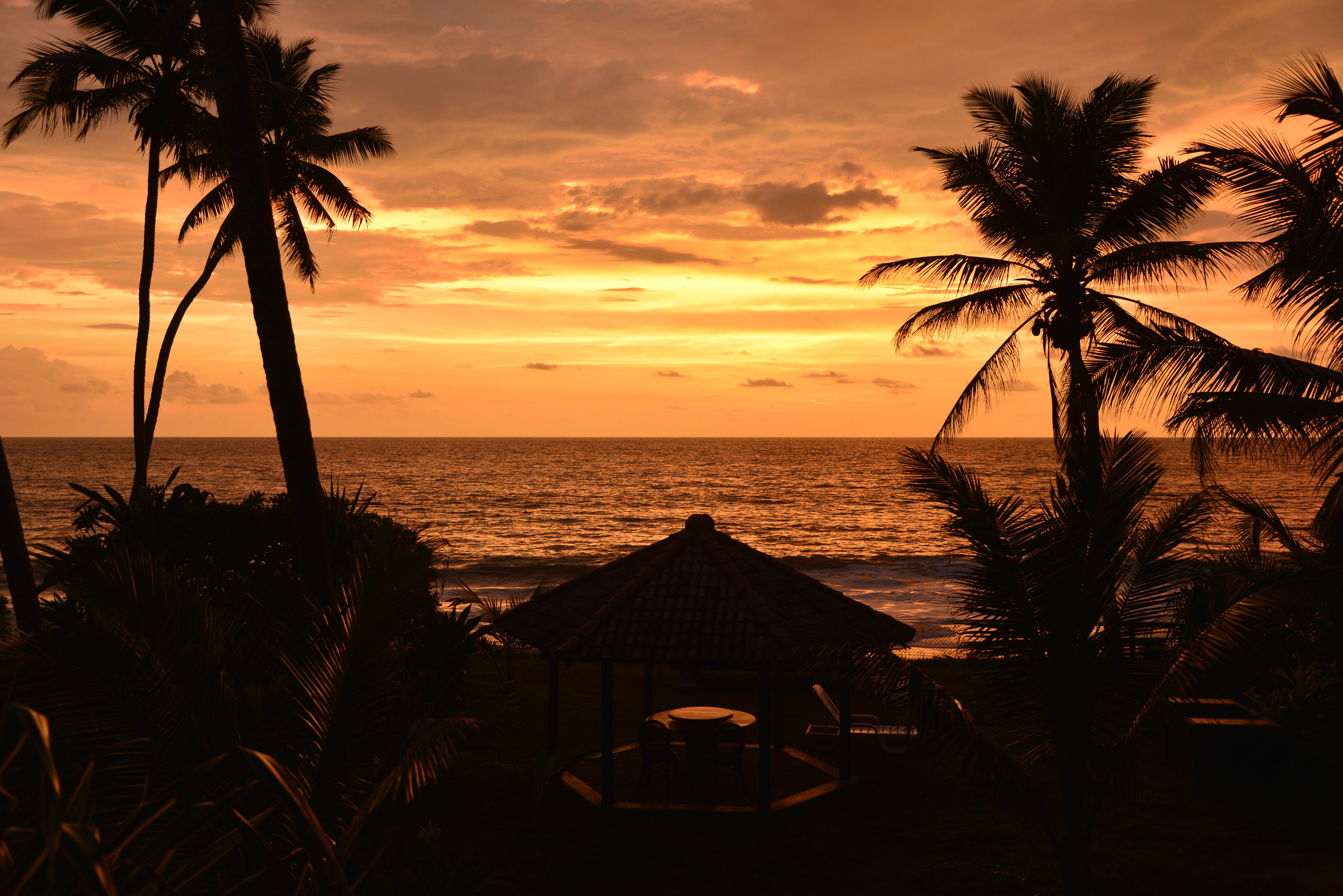 Beach sunset in Sri Lanka during a relaxing vacation or honeymoon