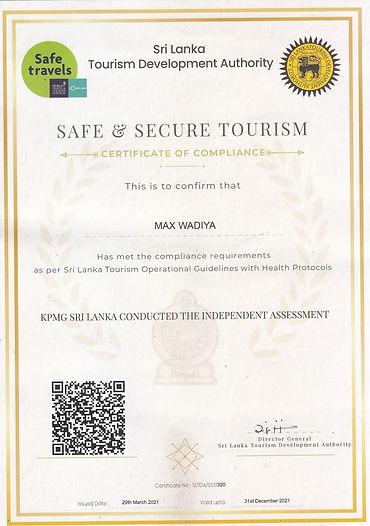 Safe and Secure Certificate.jpg