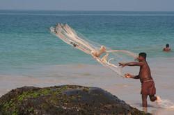 Sri Lanka fisherman at the beach. Enjoy good fresh fish and exquisite cuisine at your Sri Lanka vaca