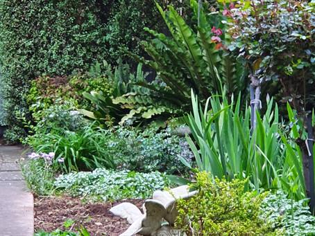 Gardening, a way to heal
