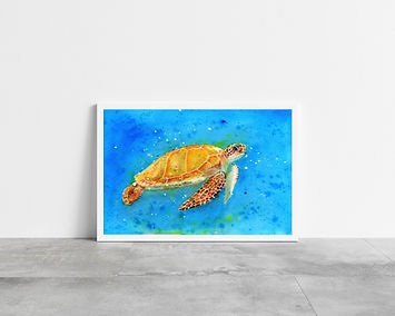 Sea Turtle in vibrant bright blue water A4 Art Print in a white frame