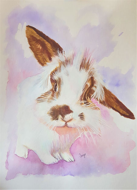 Watercolour pet portrait commission painting of a rabbit
