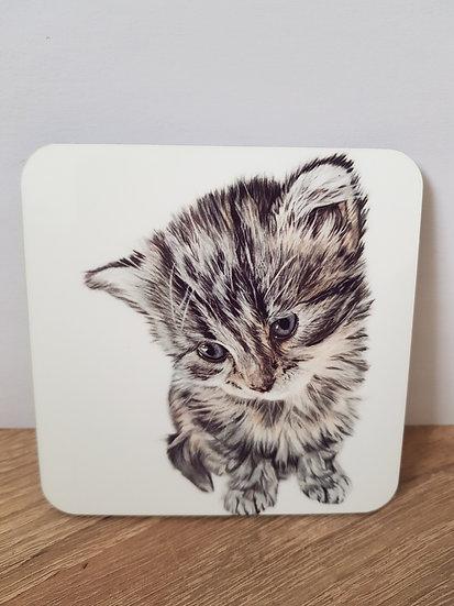 Cute kitten square hard backed coaster - Jagos Art