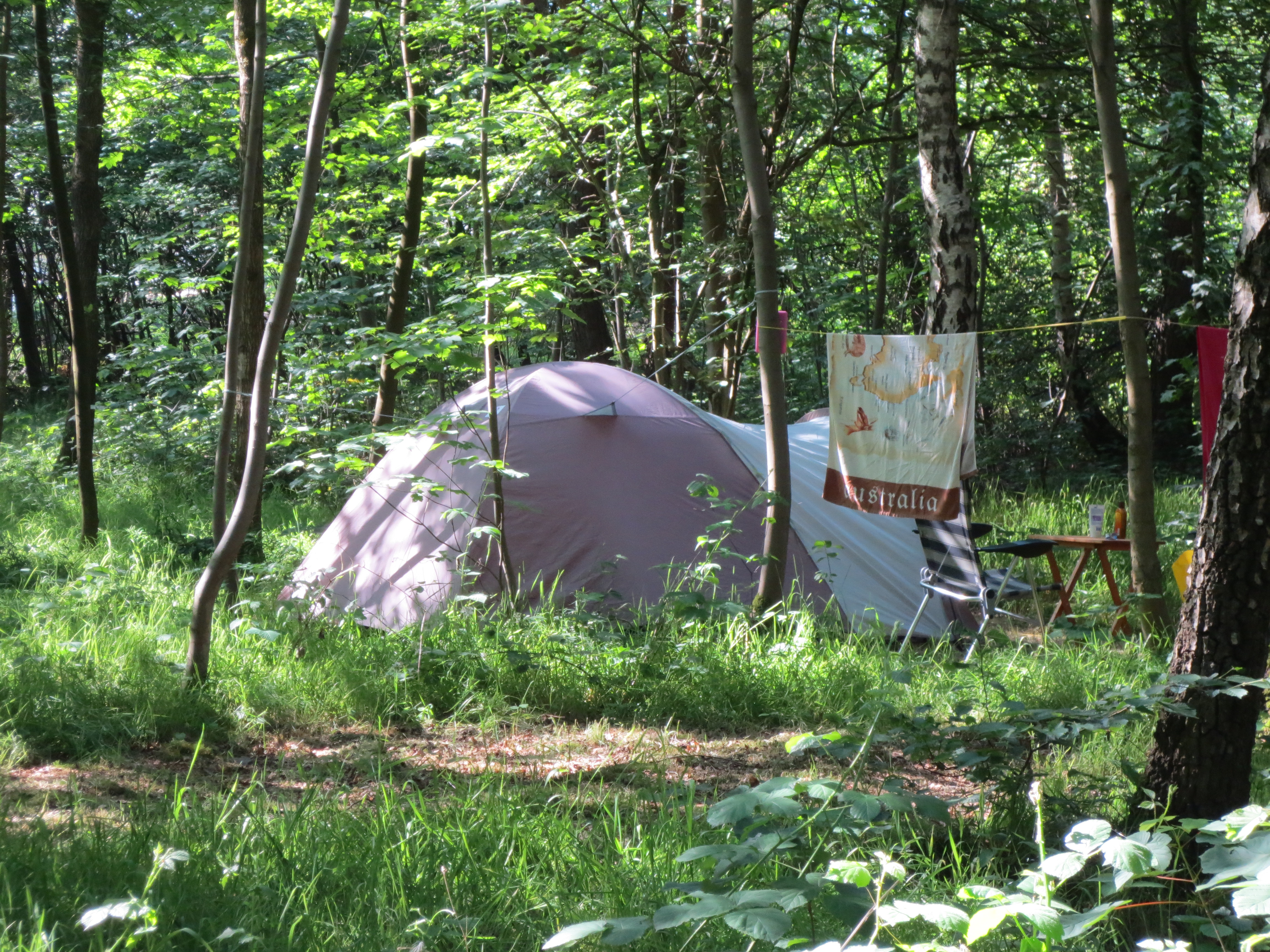 kamperen hoge venen camping wesertal