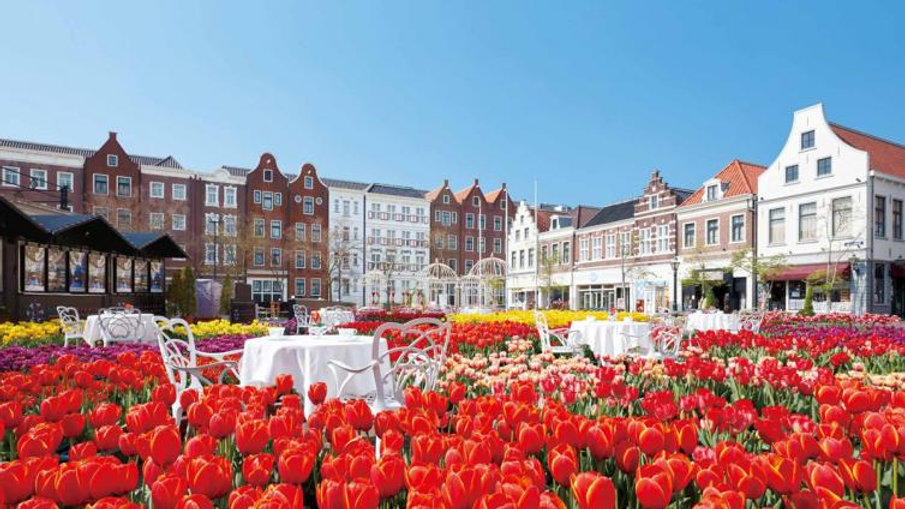 Huis Ten Bosch 1 Day Bus Tour from Fukuoka