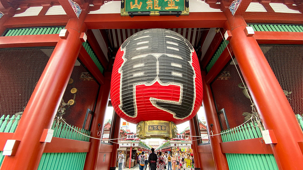 Amazing Tokyo 1 Day Tour with Lunch