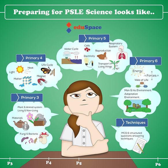 PSLE Science 2021.jpeg