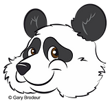panda transparent brown eyes png.png