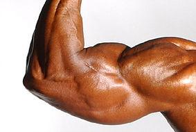 ¿Por qué no crecen tus músculos?