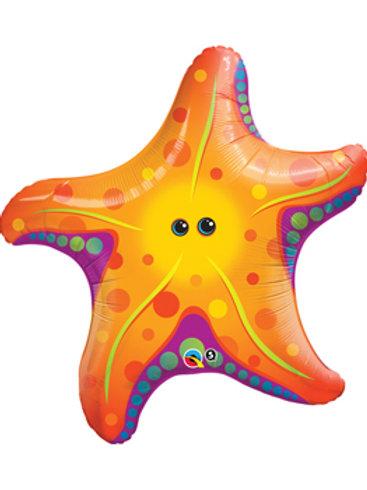 """Estrela do mar 30"""" UNIDADE (Qualatex)"""