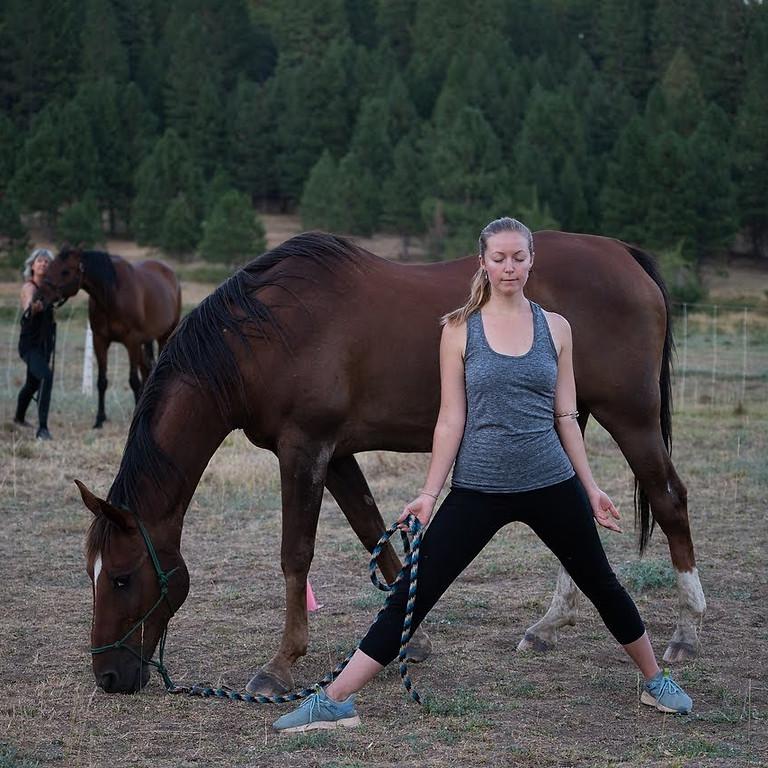 Yoga & Movement Meditation with Horses
