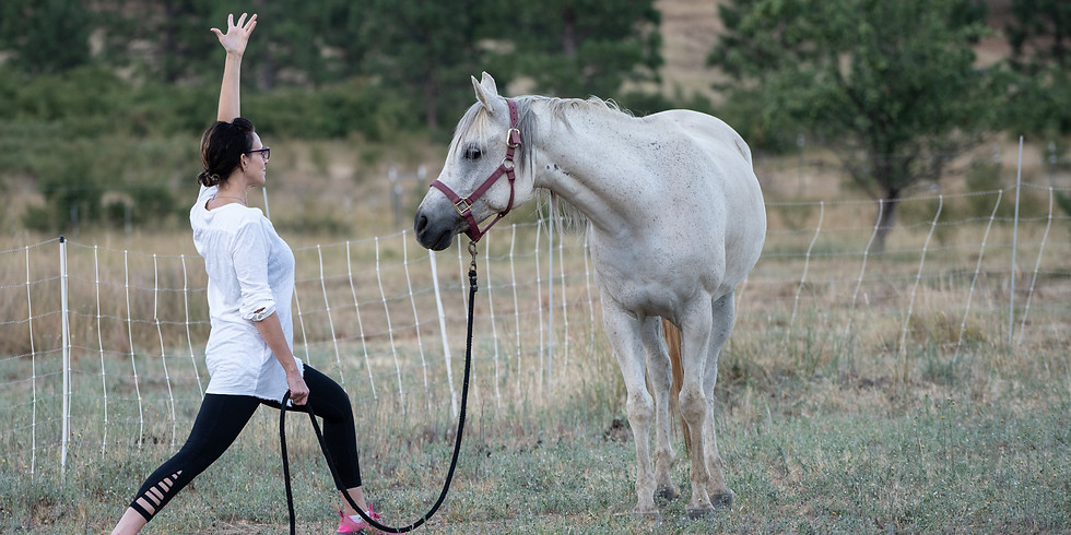 Pre-Launch: Guided Yoga & Meditation with Horses
