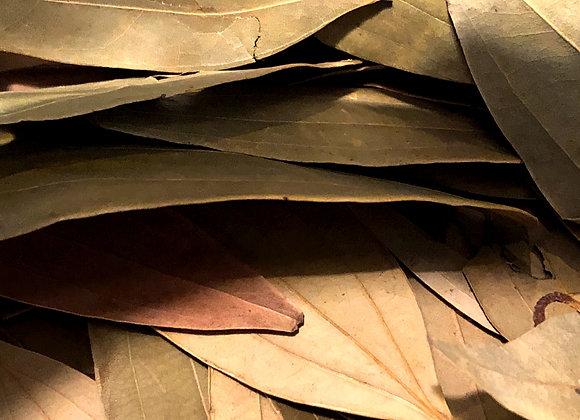 Tejpat Leaf (Indian Bay leaf)