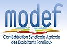 MODEF_logo.jpg