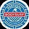 Logo BSP 2021 (9).png