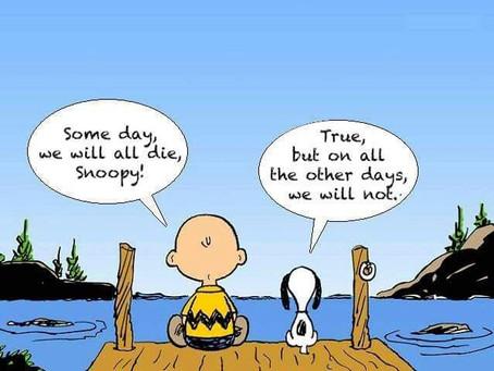Optimisme?