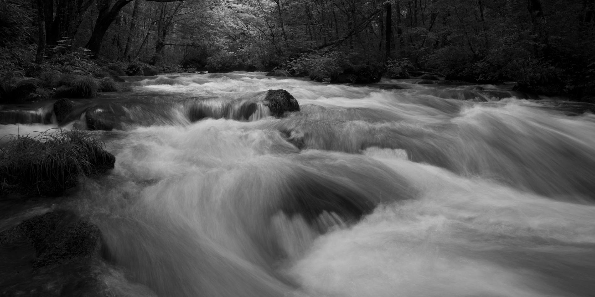 Oirase River Gorge #2