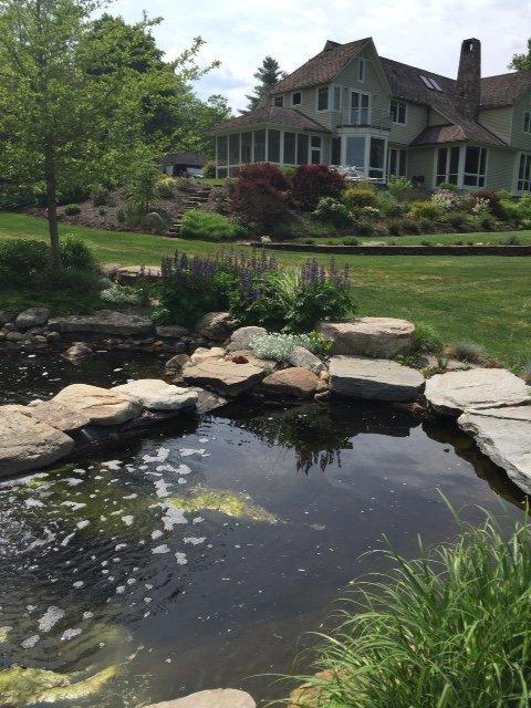 Amherst water garden