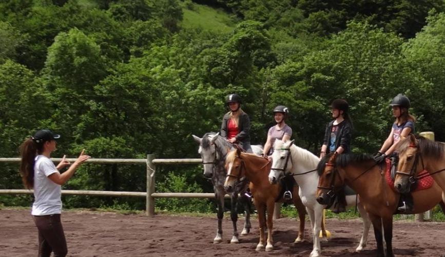 Formation AAE poney
