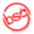 logo bsg.jpg