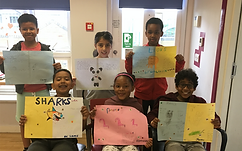 Primary Project on Animals
