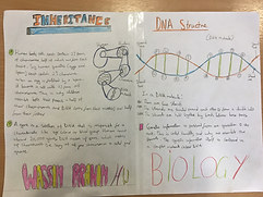 Science Project on DNA & Inheritance