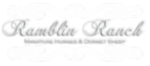 Ramblin Ranch logo white.png