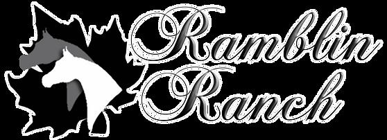 Ramblin Ranch Miniature Horses