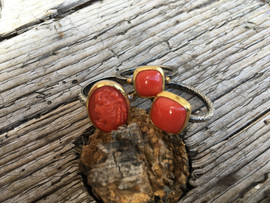 3 Ringe Koralle