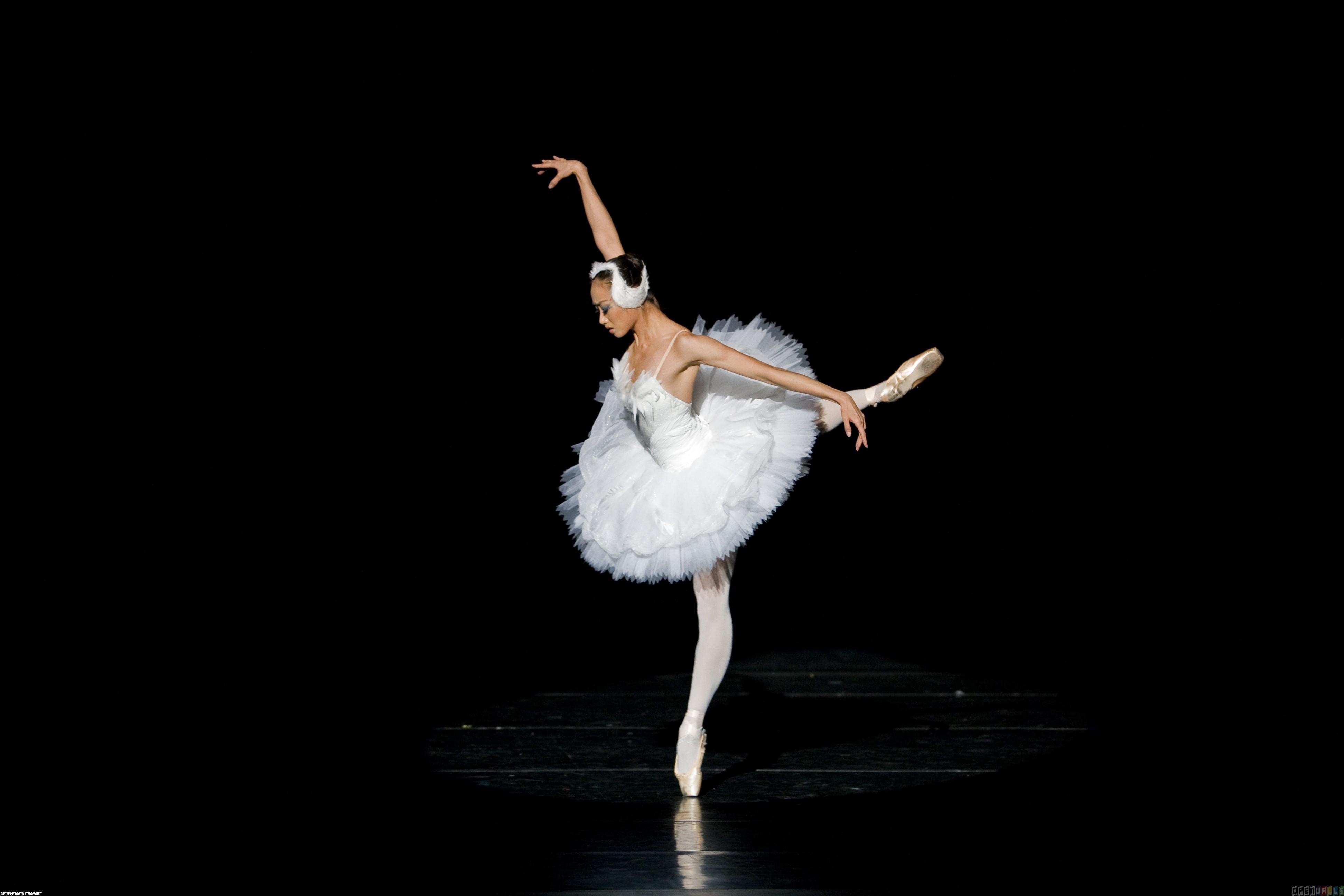 _White_swan_ballerina_054689_
