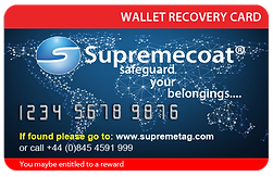Wallet Recovery