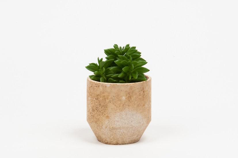 Mini Pot #274