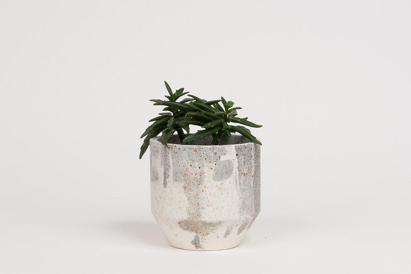 Mini Pot #338
