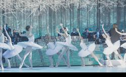 Palais d'Hiver St-Petersbourg ballet
