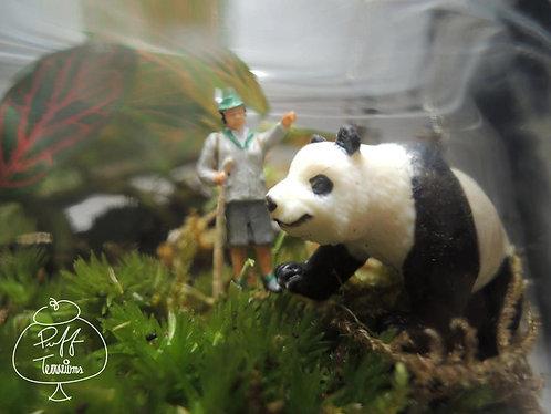 MY VERY OWN PANDA