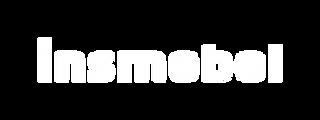 logo ins 12.png